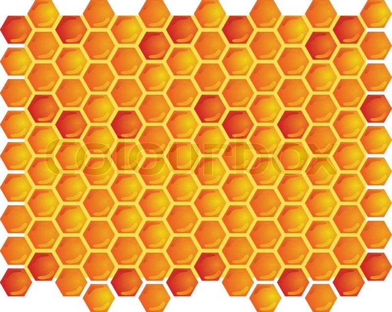 Honey Bee Natural Beauty