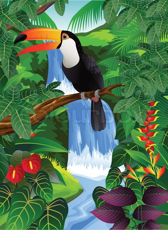Amazon Rainforest Toucan