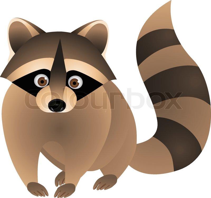 Raccoon Cartoon | Stock Vector | Colourbox Raccoon Eye Mask