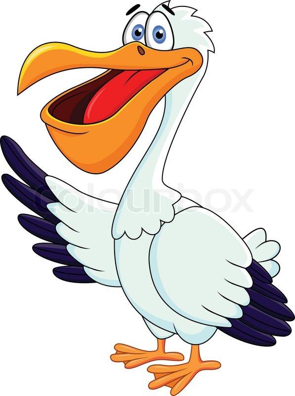 pelican cartoon vector colourbox