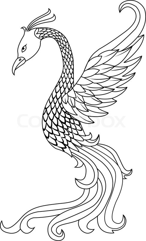 phoenix bird tattoo stock vector colourbox