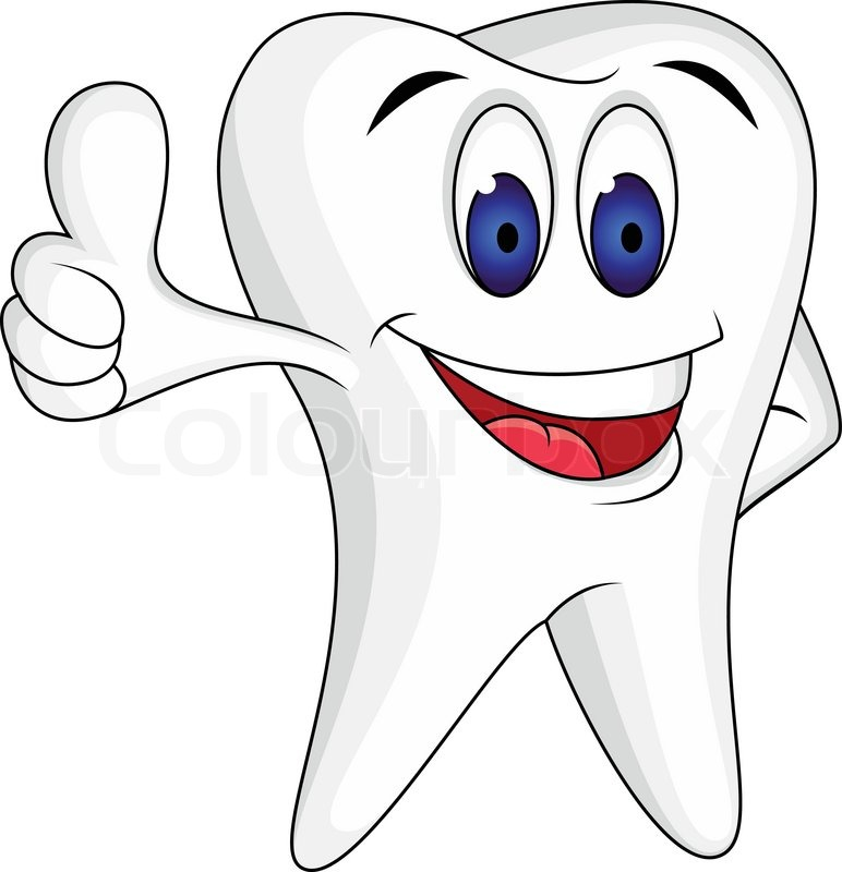 tooth with thumb up stock vector colourbox