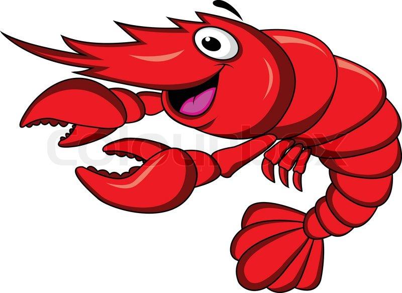 Shrimp cartoon | Stock Vector | Colourbox
