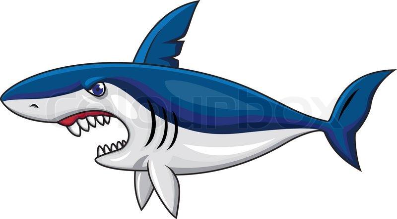 Vector Illustration Of Angry Shark Cartoon