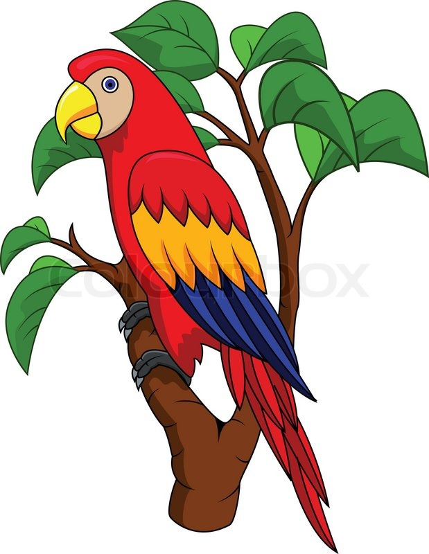 Funnny Parrot cartoon | Stock Vector | Colourbox