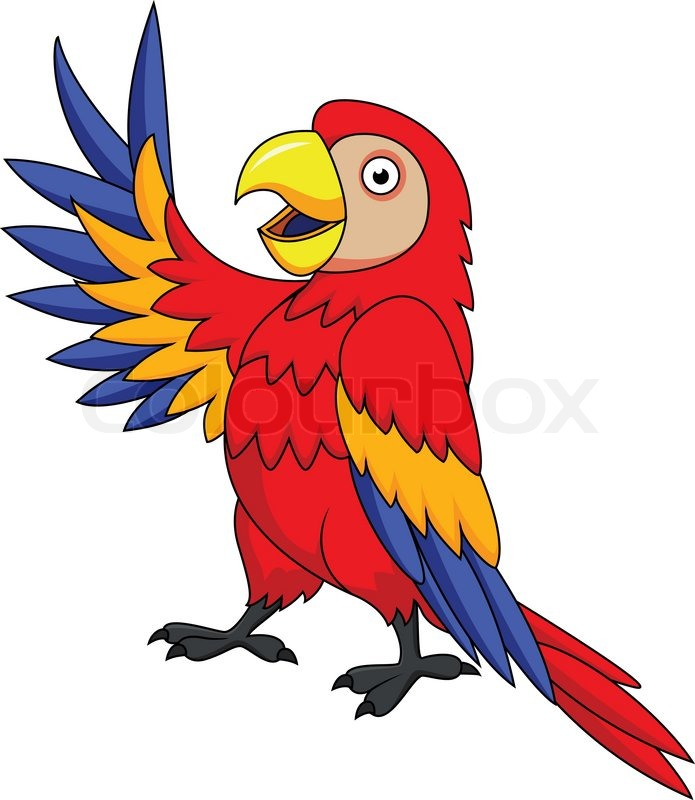 Funnny Parrot Cartoon Stock Vector Colourbox