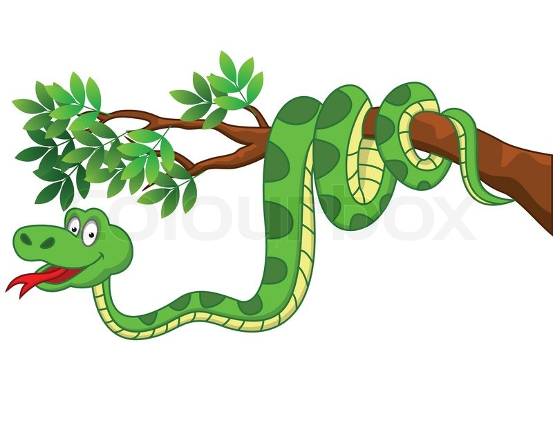 snake cartoon stock vector colourbox Jungle Border Clip Art free jungle animal border clipart