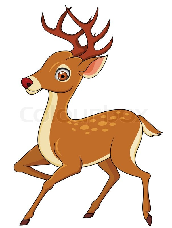 Deer cartoon isolated  Stock Vector  Colourbox