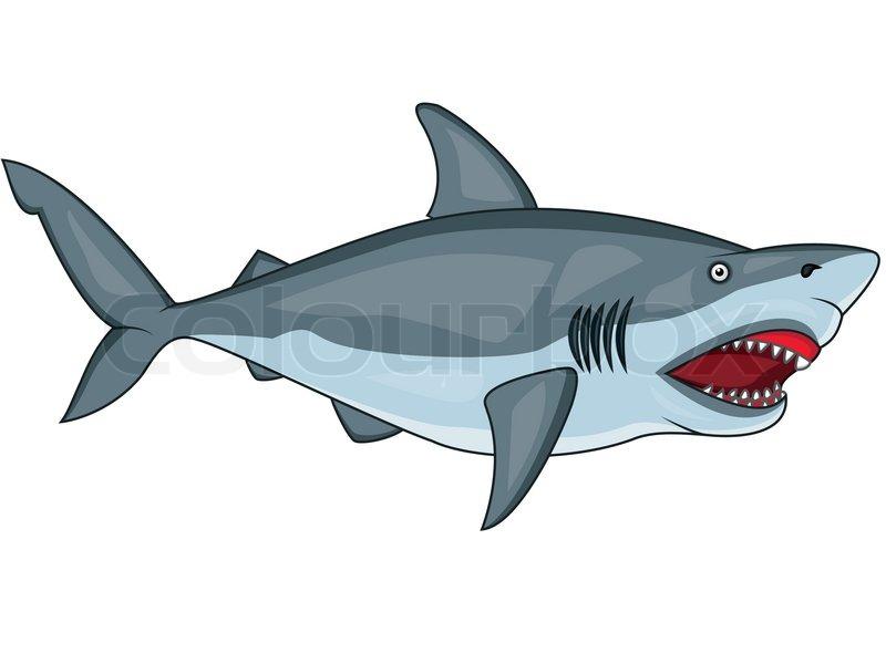angry shark stock vector colourbox