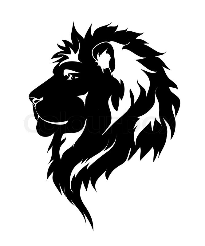 Graphic lion black and white drawing for tattoo vector