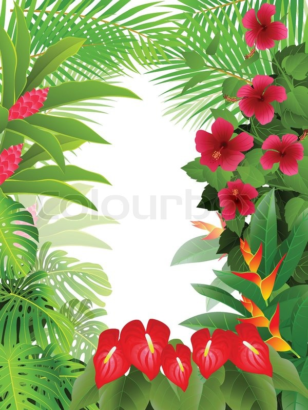 Quot Vector Illustration Of Tropical Forest Background
