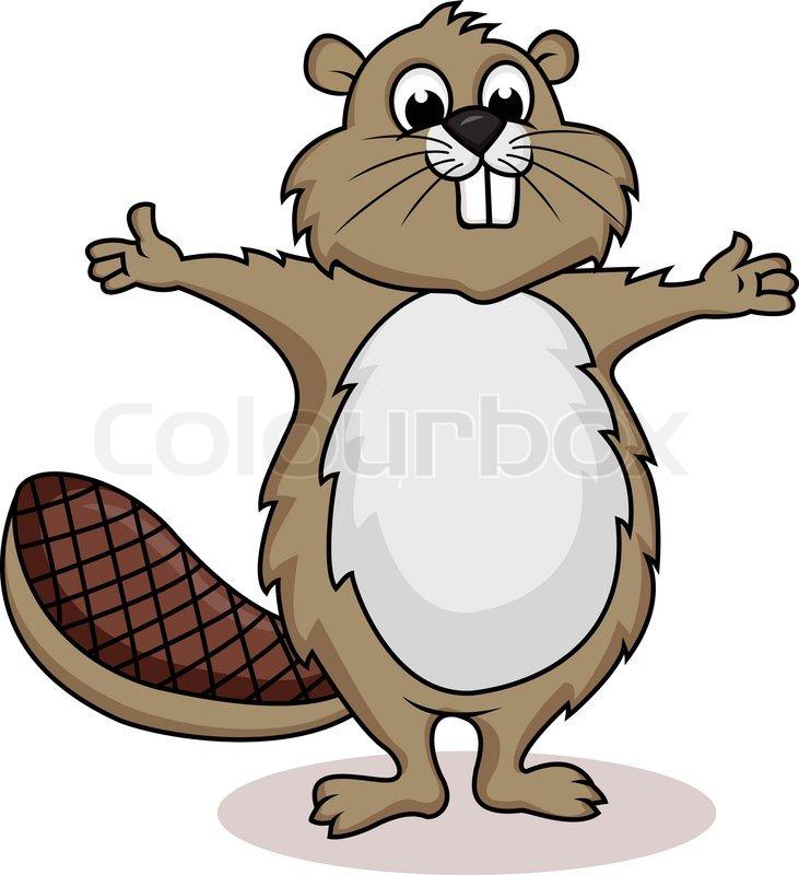 Beaver cartoon | Stock Vector | Colourbox