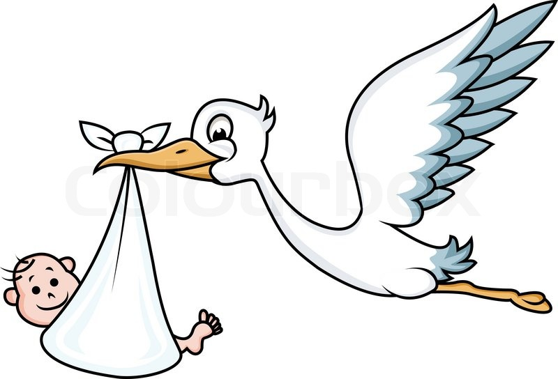 stork with baby stock vector colourbox