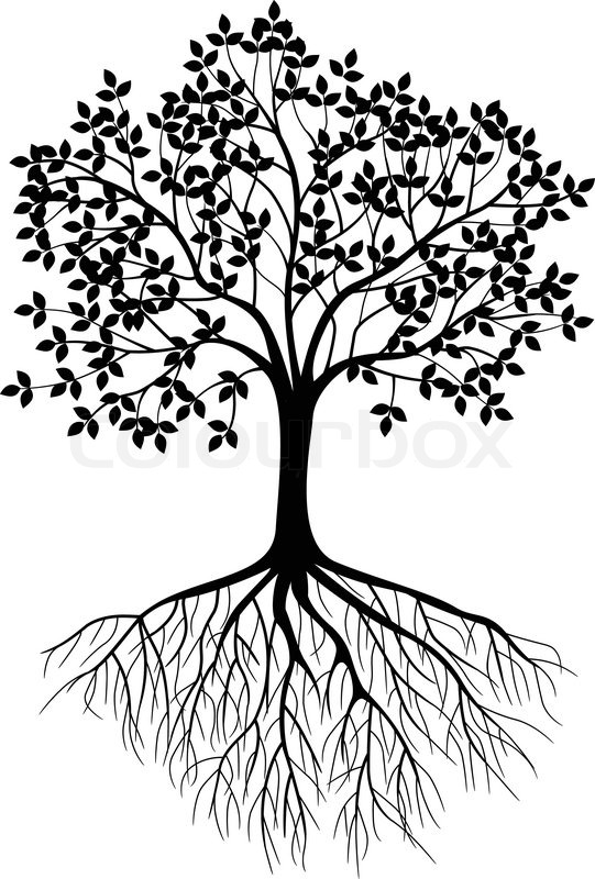 Mustard Tree Drawing Tree Silhouette Background