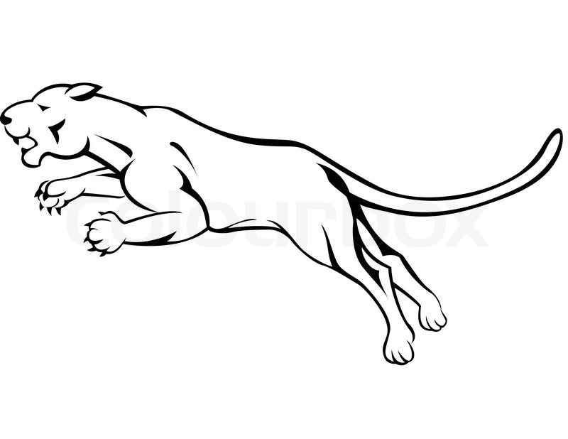 panther drawing outline - photo #25