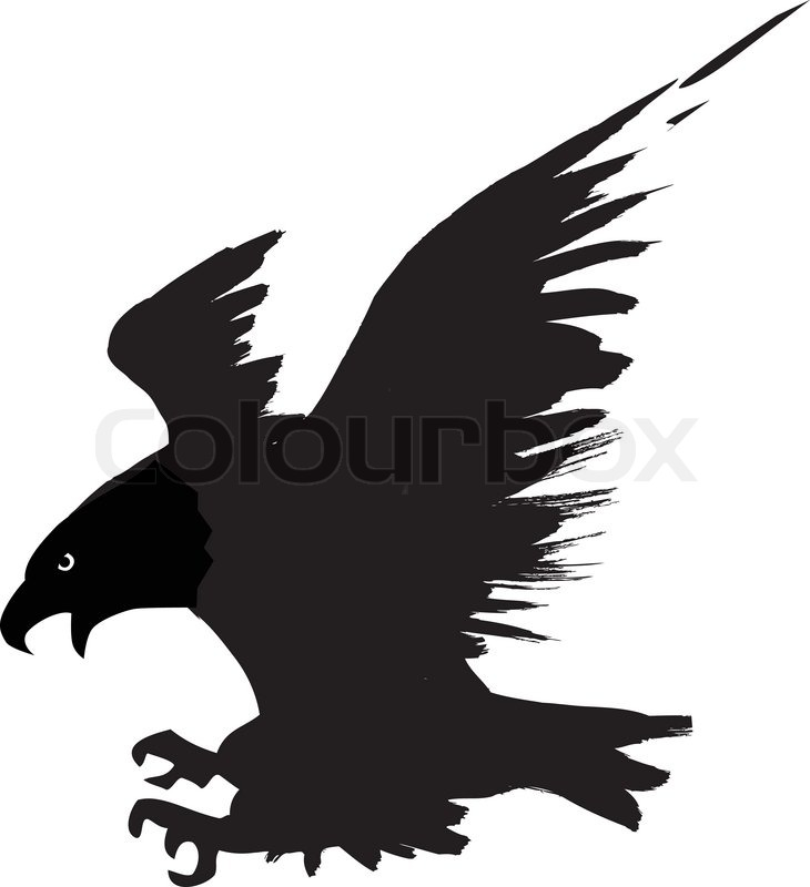 Eagle Flying | Stock Vector | Colourbox