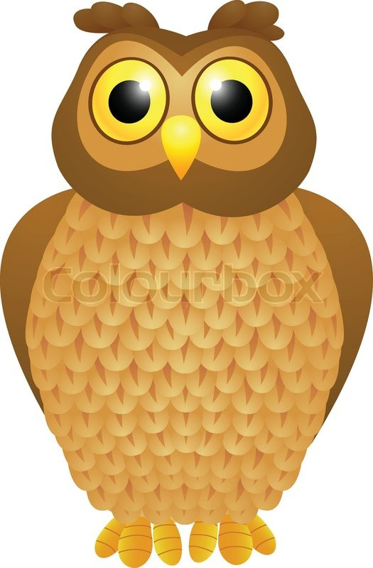 owl cartoon stock vector colourbox