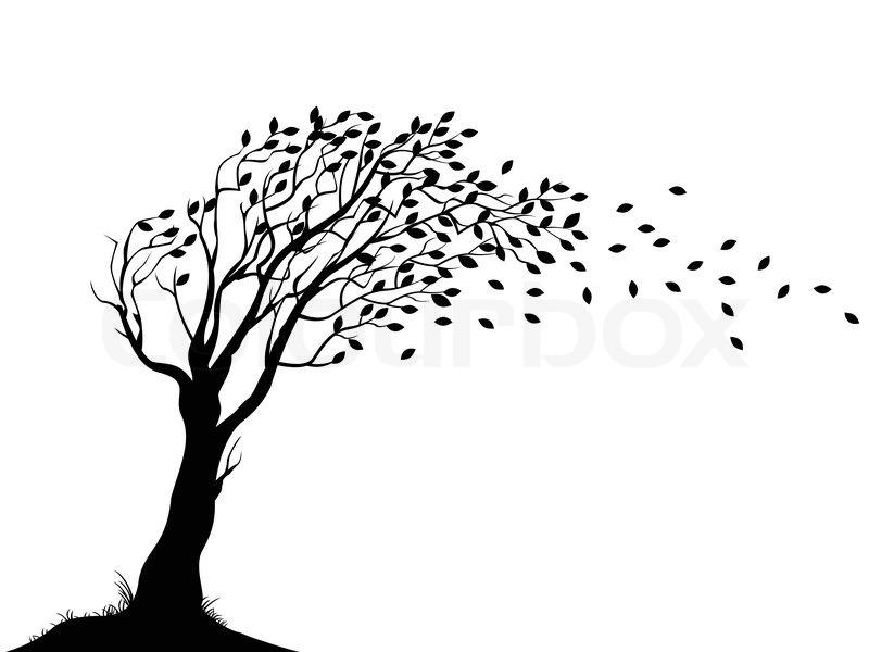 Autumn Tree Silhouette Stock Vector Colourbox