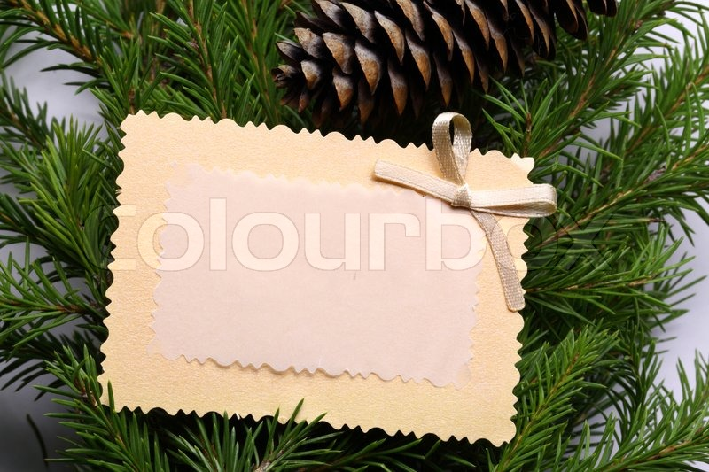 Background with fir and greeting card, stock photo