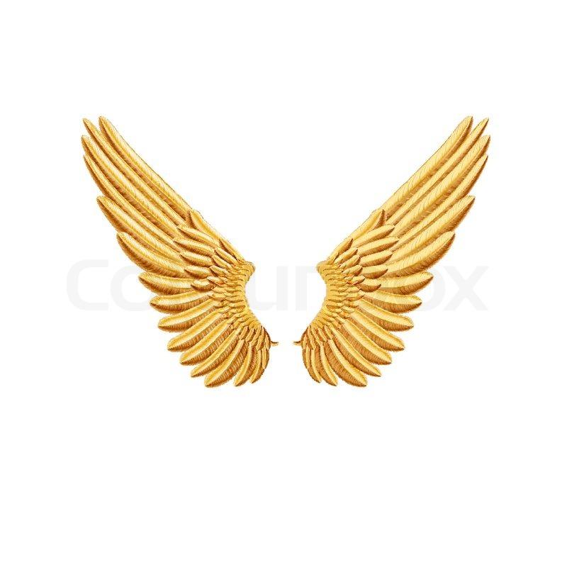 Golden Wings Stock Vector Colourbox