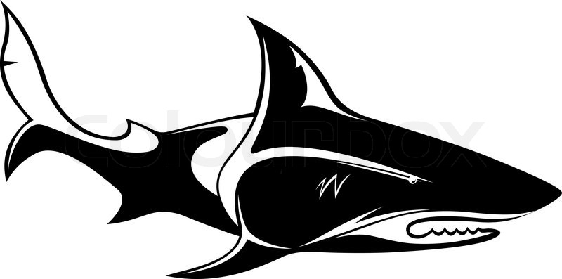 The Vector Image Of A Shark Orca Whale Stock Vector