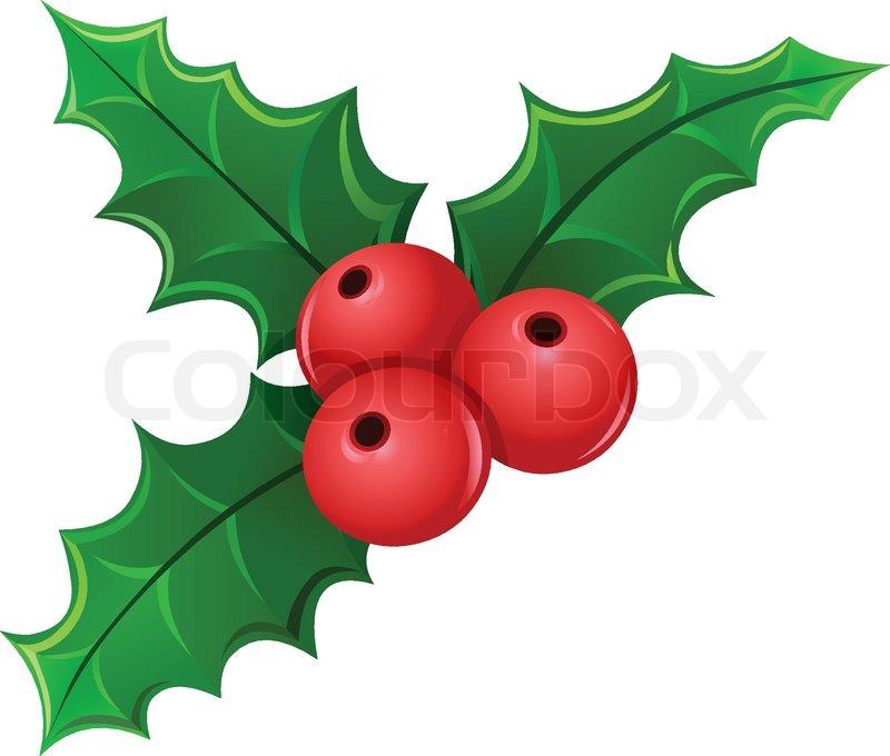 christmas holly berry mistletoe stock vector colourbox. Black Bedroom Furniture Sets. Home Design Ideas