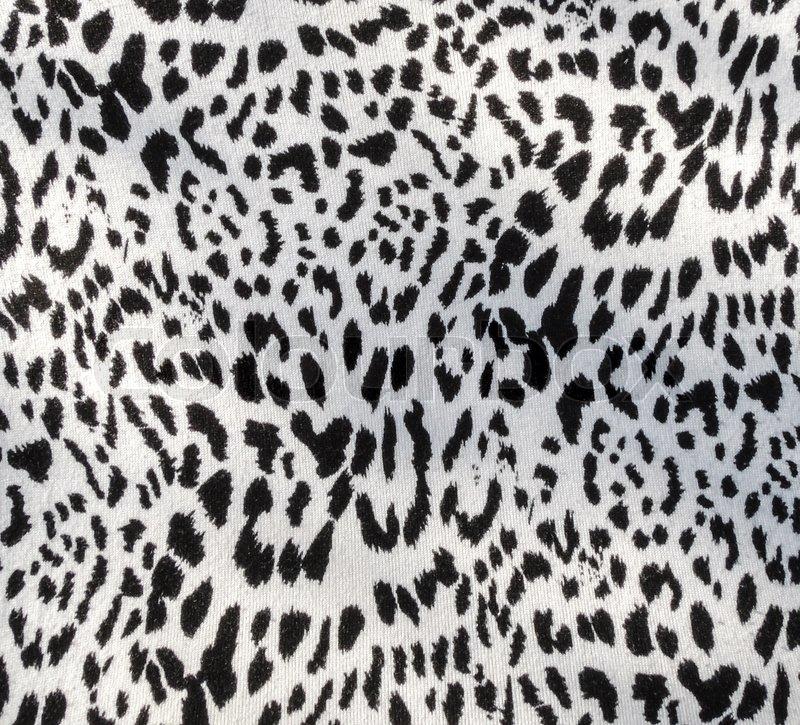 Leopard Fabric Textile Stock Photo Colourbox