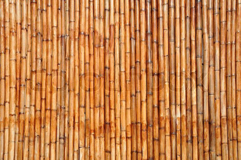 Bamboo background | Stock Photo | Colourbox