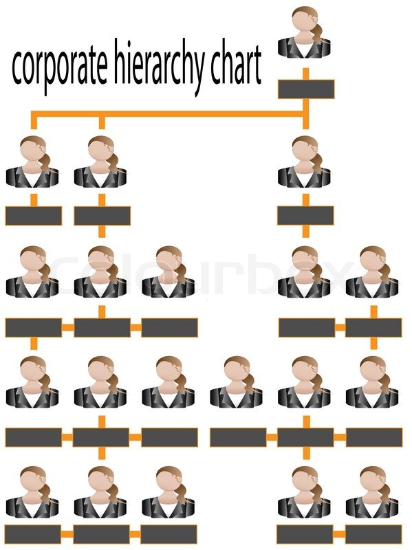 Corporate hierarchy chart business | Stock Vector | Colourbox