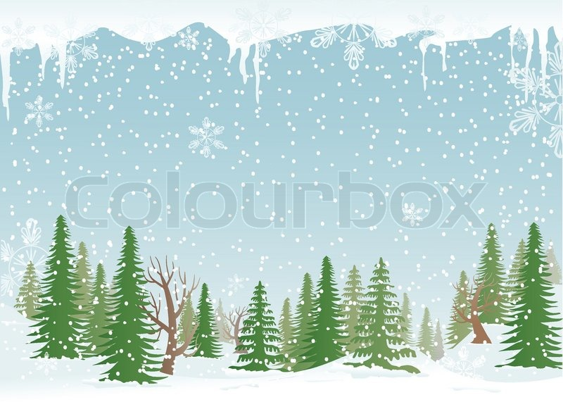 snowy fir trees forest - photo #25