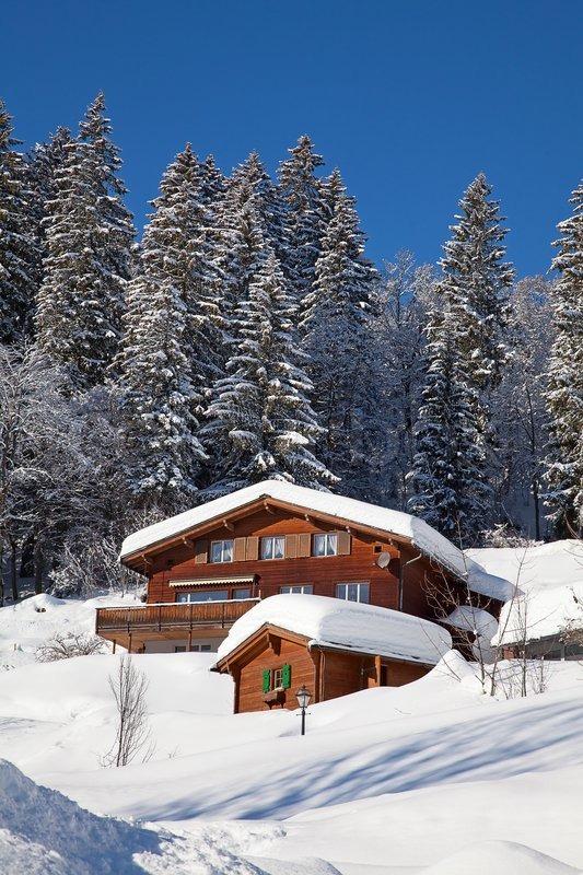 Winter in alps, stock photo