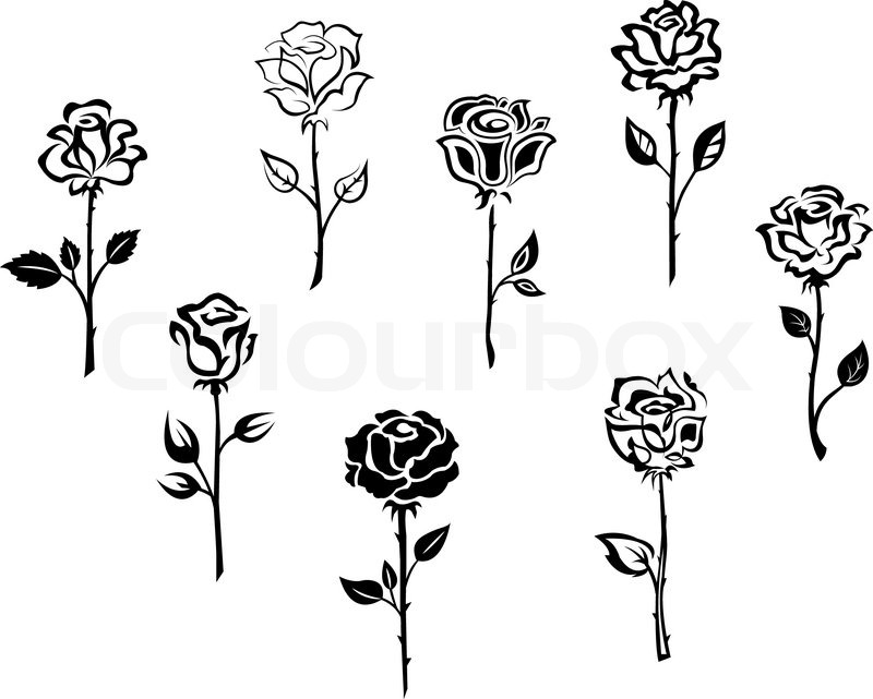 black single men in la rose Explore caitlin gillespie's board bachelorette party themes + ideas on pinterest  single men and bachlorette party  oh la la french pink & black black,.