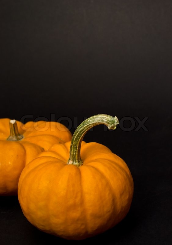 Halloween Udsmykning Pyntning Stock Foto Colourbox
