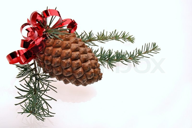 Christmas Decoration With Big Pine Cone Red Ribbon And Pine