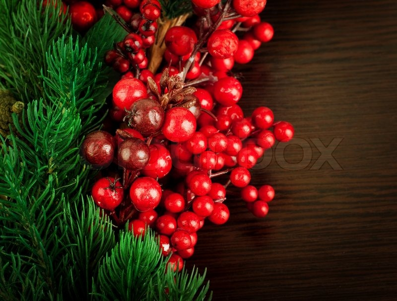 Christmas wreath from red berries a fur tree and cones stock photo