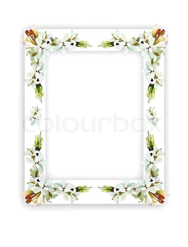 Tuberose Flowers on Vertical White Frame | Stock Photo | Colourbox