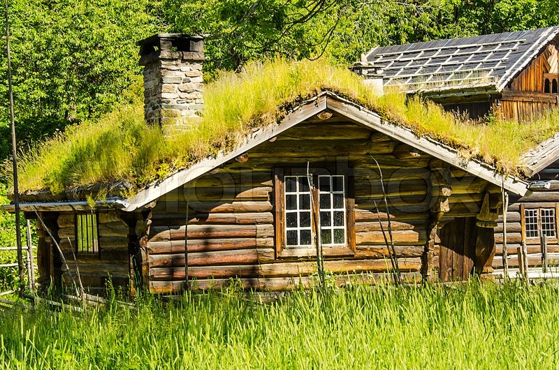 how to make a green roof on my shed