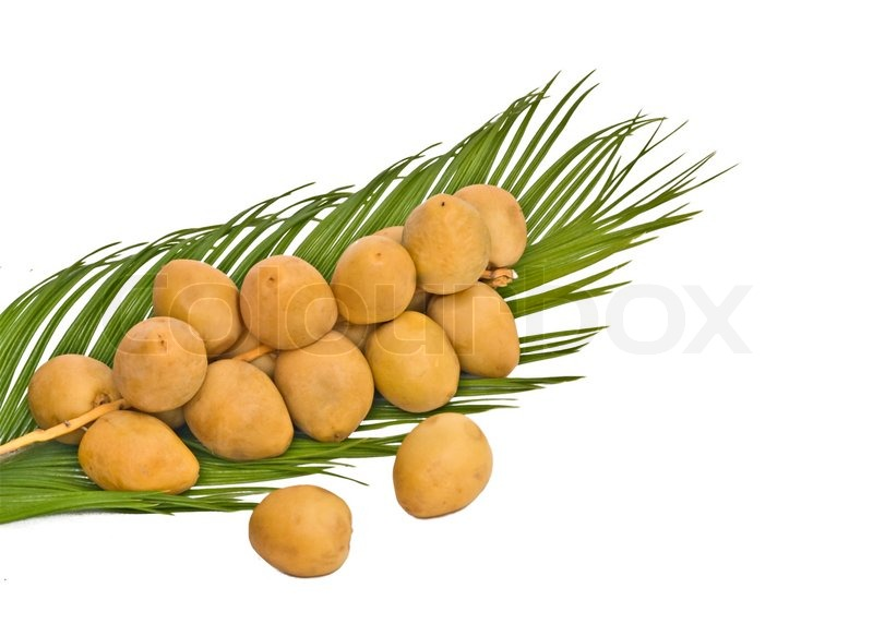 eskorte østfold dates fruit