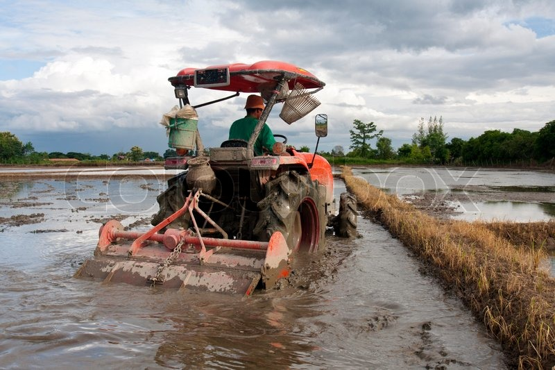Tractor plowing soil in paddy for prepare planting rice for Preparation of soil wikipedia