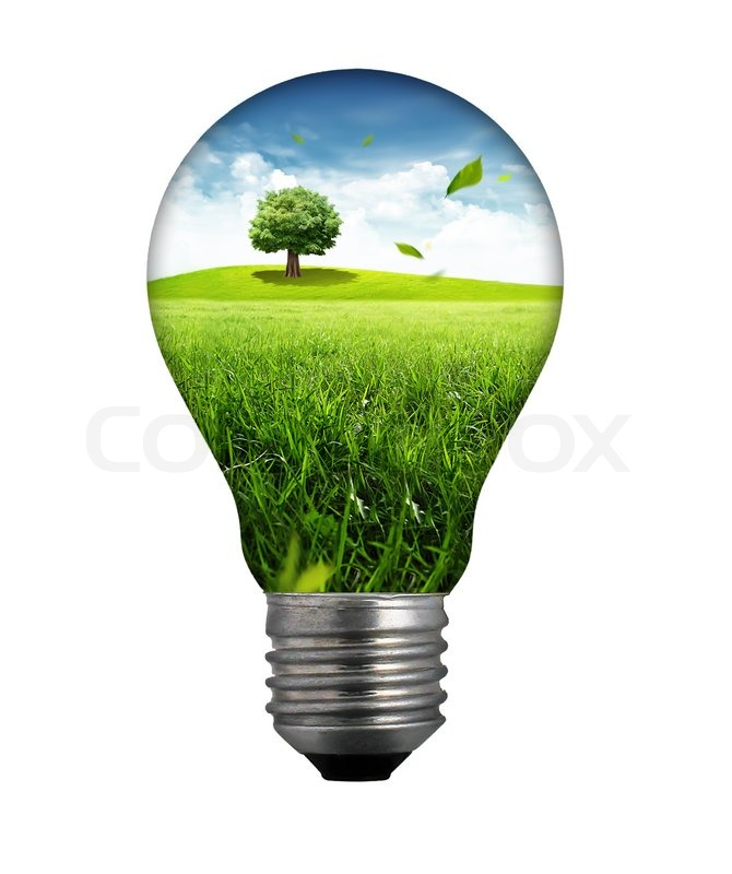 Natural Energy Concept Light Bulb With Summer Meadow Stock Photo Colourbox