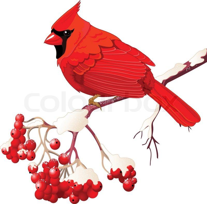 Cardinal Flying Tattoo Red cardinal bird in cartoon