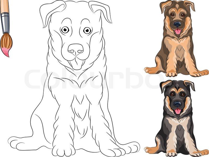Vector Coloring Book of smiling dog German shepherd  Stock Vector