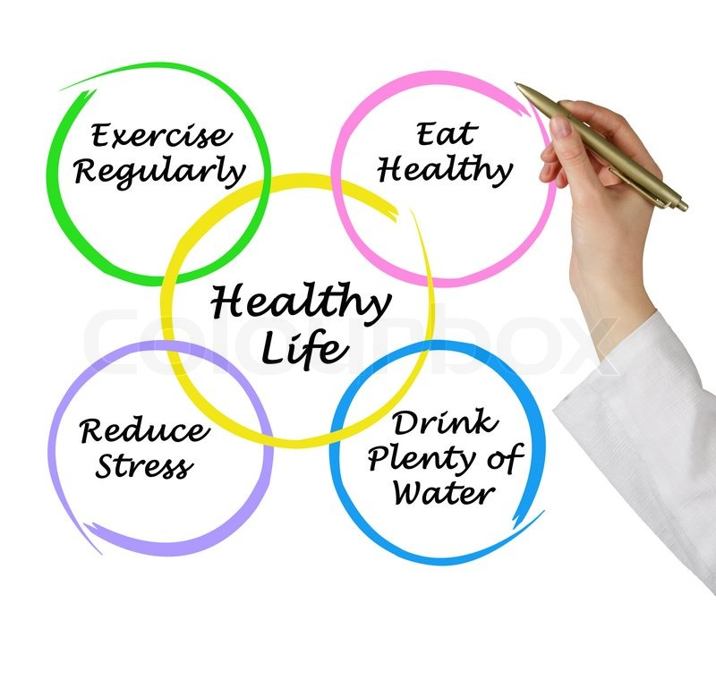 English essay healthy living