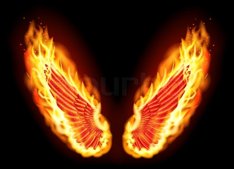 Fire Wings Stock Vector Colourbox