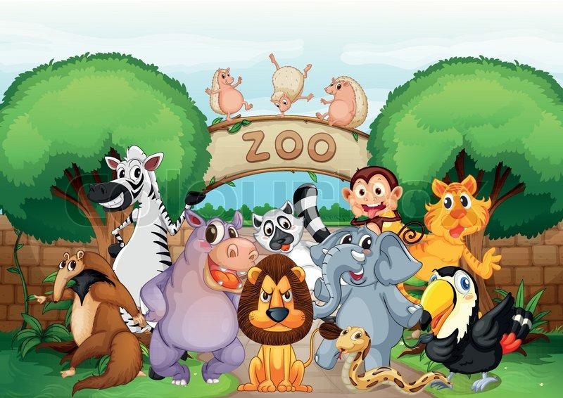 dyr zoo