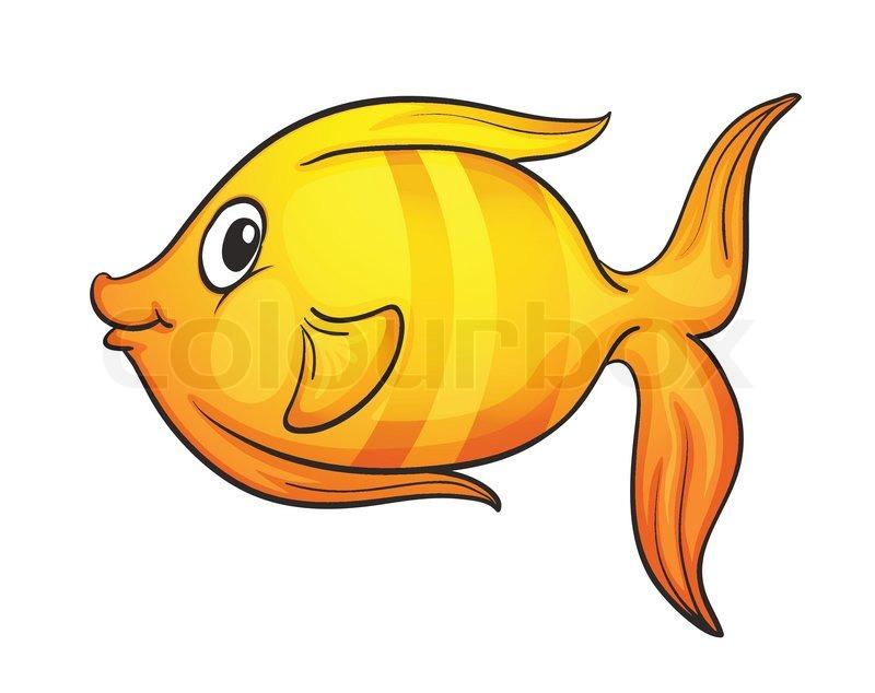 Fisch   Vektorgrafik   Colourbox