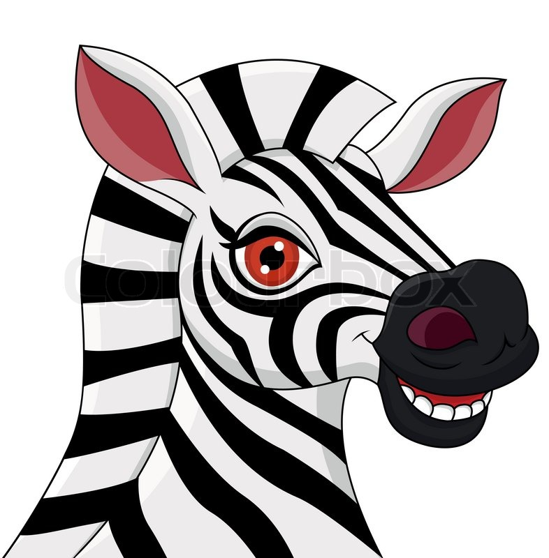 Zebra head cartoon images - photo#8