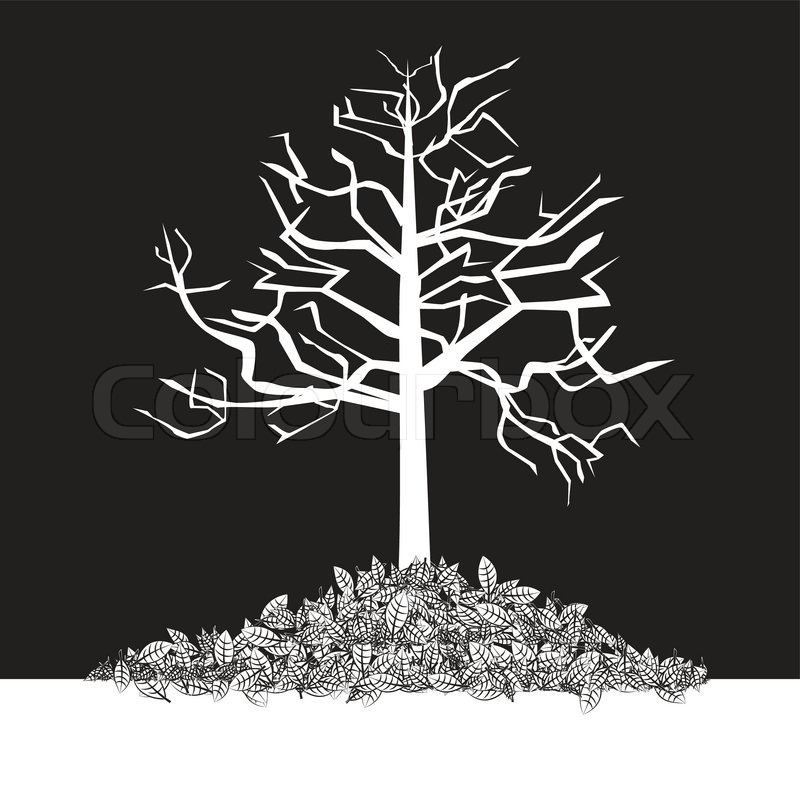 Black And White Tree Stock Vector Colourbox