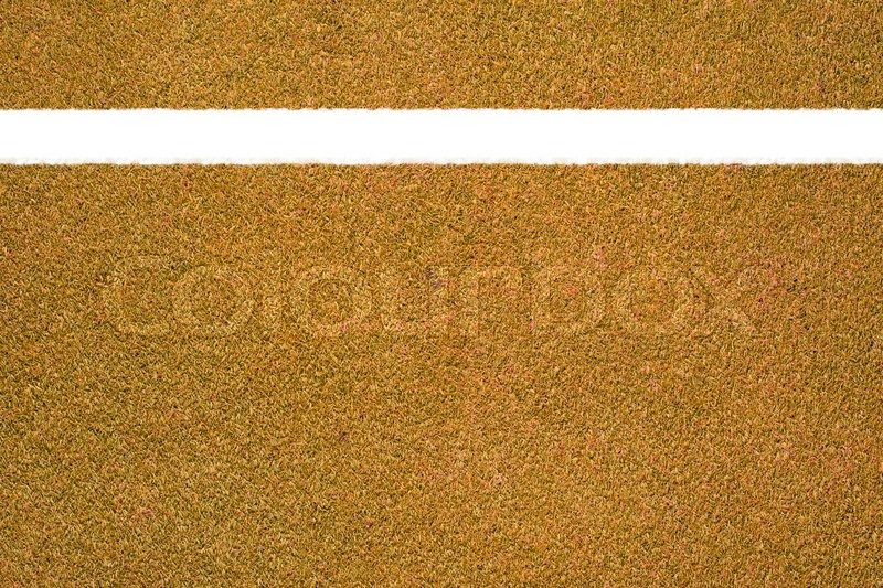 Orange Grass Texture And Background