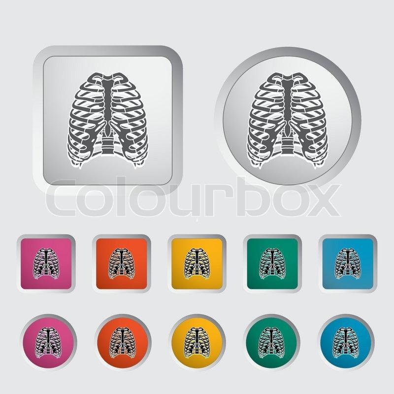 Icon des menschlichen Thorax | Vektorgrafik | Colourbox